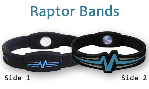raptor-bands-sides2.jpg